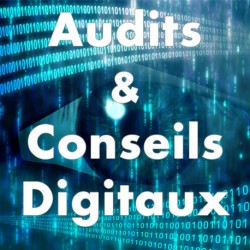 Audits & Conseils Digitaux - IPEO - vbincentcosset.fr - audit digital - Conseil digital