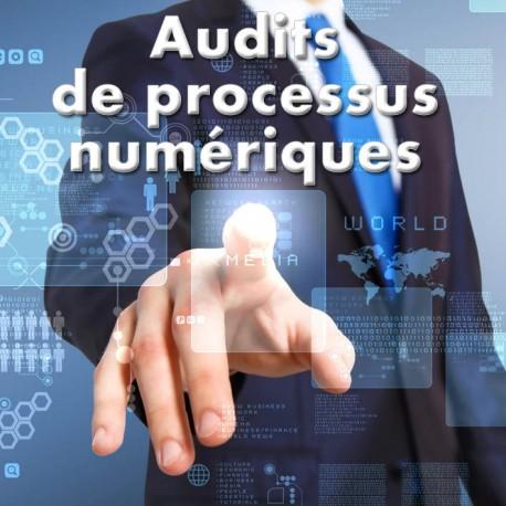 Audits de processus numériques - IPÉO - www.vincentcosset.fr
