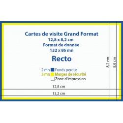 Cartes de visite Grand Format pas chères - IPÉO - Vincent COSSET