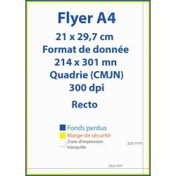 Flyer Affiche A4 (21cm x 29,7cm) - IPEO - Vincent COSSET